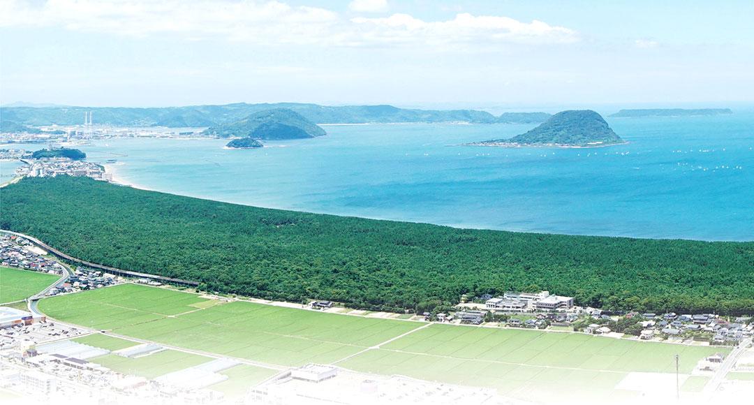 虹ノ松原の写真